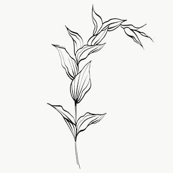 Feuilles botaniques ligne art abstrait lignes de plantes modernes ou minimales parfaites pour la décoration intérieure comme