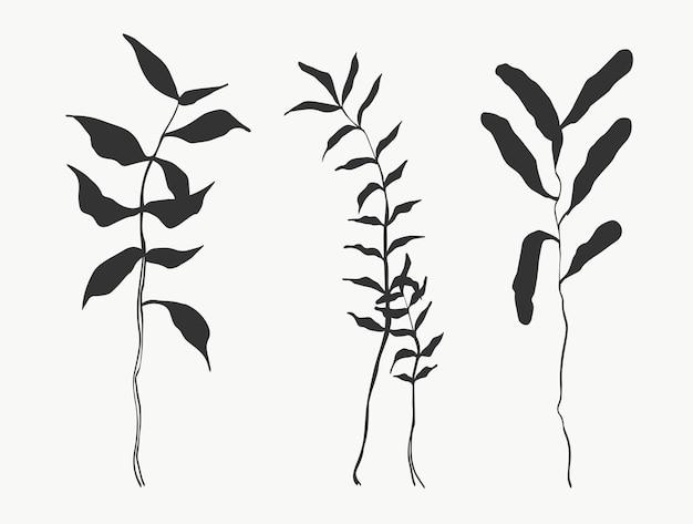 Feuilles botaniques ligne art abstrait lignes de plantes modernes ou minimales parfaites pour la décoration intérieure telle