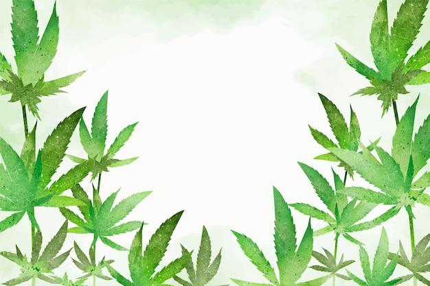 Feuilles de cannabis botanique