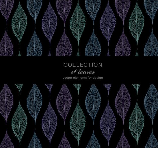 Feuilles colorées peintes sur noir
