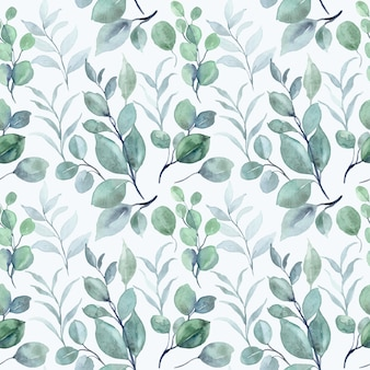 Feuilles d'eucalyptus aquarelle transparente motif
