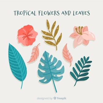 Feuilles et fleurs tropicales dessinées à la main