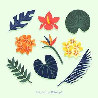 Feuilles et fleurs tropicales plates