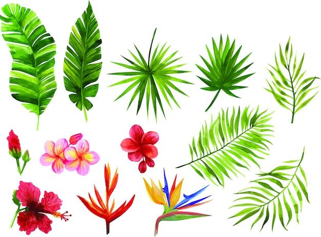 Feuilles et fleurs tropicales
