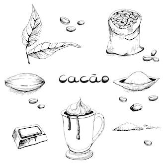 Feuilles, fruits, haricots, poudre de cacao, un verre avec une boisson, un morceau de chocolat.