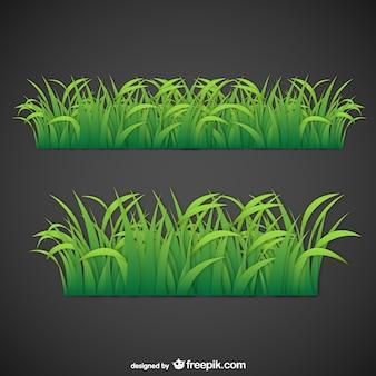 Feuilles d'herbe vecteur