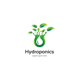 Feuilles hydroponiques et logo de l'eau
