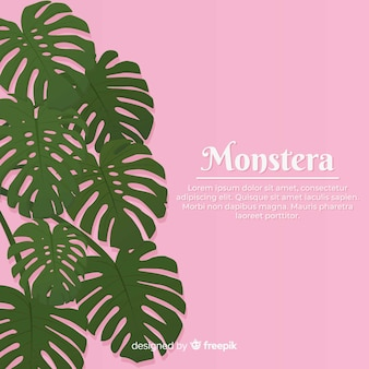 Feuilles de monstera dessinées à la main