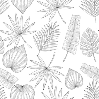 Feuilles de palmier sur fond blanc. modèle sans couture dessiné de main.