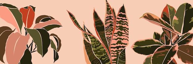 Feuilles de plantes d'intérieur de collage d'art dans un style tendance minimal. silhouette de plantes sansevieria, spathiphyllum et ficus dans un style abstrait simple et contemporain sur fond rose. illustration vectorielle