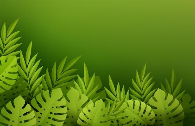 Feuilles tropicales d'été vert