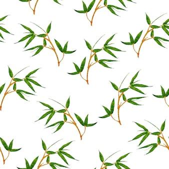 Feuilles tropicales jungle feuilles fond d'été