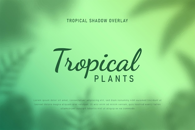 Feuilles tropicales ombre overlay fond illustration vecteur