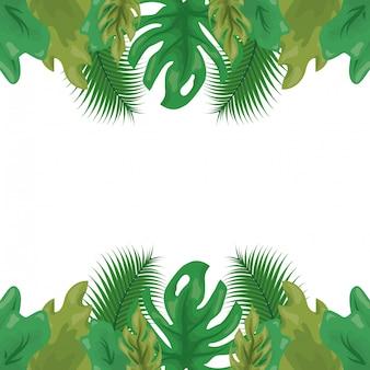 Feuilles tropicales vertes avec deux nuances de vert, motif naturel