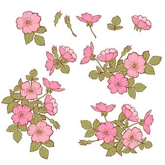 Feuilles vertes dessinées à la main fleurs roses