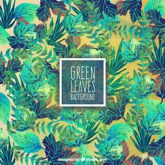 Les feuilles vertes de fond dans le style peint à la main