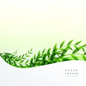 Feuilles vertes fond avec espace de texte