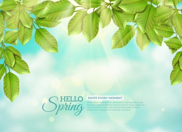 Feuilles vertes en rayons de printemps soleil