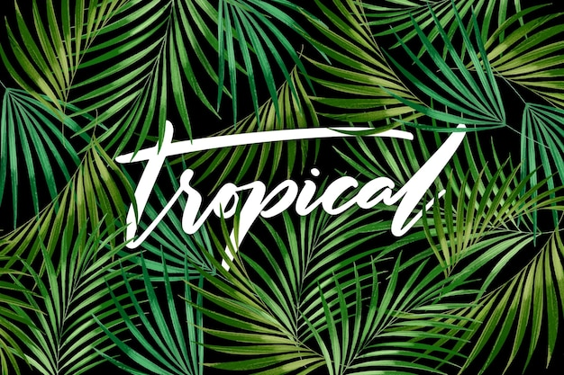 Feuilles vertes sans soudure lettrage tropical