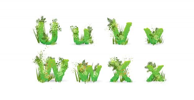 Feuilles vertes vecteur alphabet. abc élégant avec des feuilles tropicales colorées, des buissons, des fleurs et des éléments de la nature