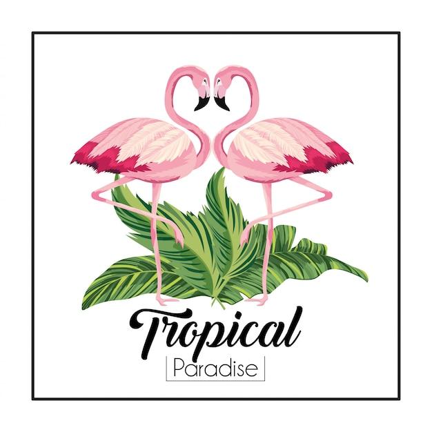 Flamants roses couple d'animaux avec des feuilles tropicales