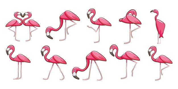 Flamingo vector set design clipart