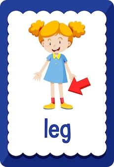Flashcard de vocabulaire avec le mot jambe