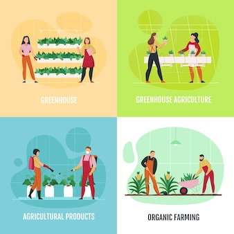 Flat 2x2 icons set avec des gens qui plantent et arrosent des légumes fruits fleurs en serre isolé
