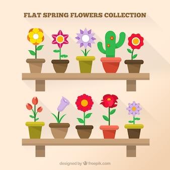 Flat collection de pot de fleurs