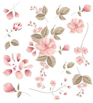 Fleur, cadre