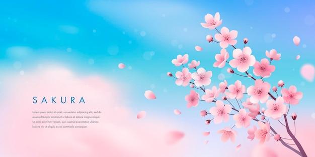 Fleur de cerisier de printemps