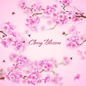 Fleur De Cerisier Rose Sakura Fond Floral Vecteur Premium