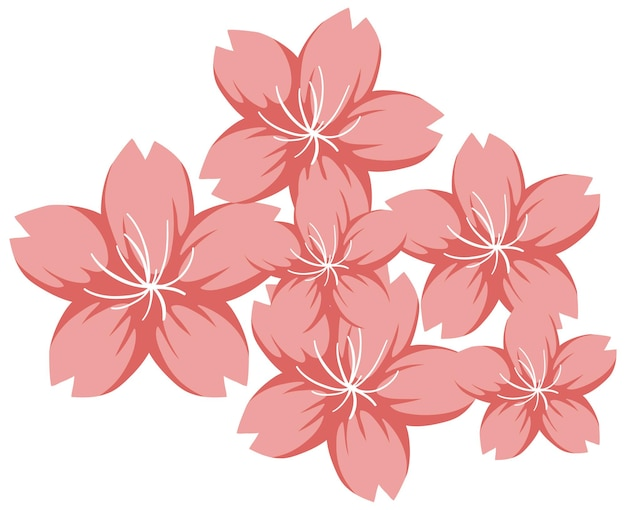 Fleur de cerisier ou sakura en style cartoon isolé