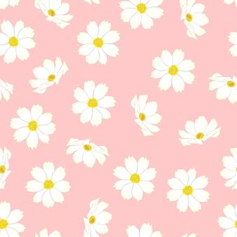 Fleur de cosmos blanc sur fond rose