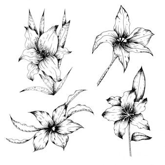 Fleur et feuille dans le style vintage