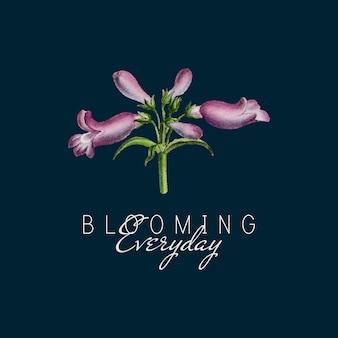 Fleur de feuillus penstemon