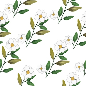 Fleur de jasmin blanc