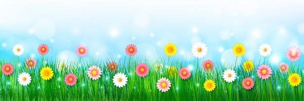 Fleur de printemps et fond d'herbe verte