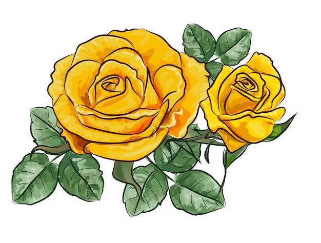 Fleur rose jaune