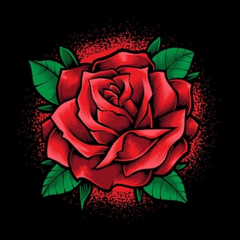 Fleur rose rouge isolée sur fond noir