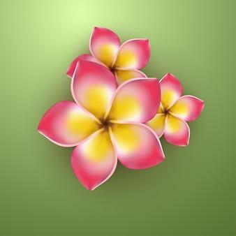 Fleur tropicale rose jaune réaliste