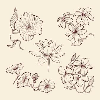 Fleurs de botanique vintage dessinées à la main