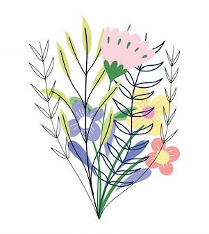 Fleurs branche feuilles feuillage nature botanique