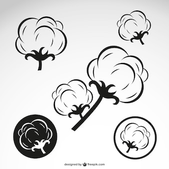 Fleurs de coton aperçu