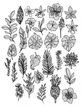 Fleurs dessin et croquis à la main en noir et blanc