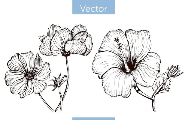 Fleurs dessinées à la main vecteur monochrome