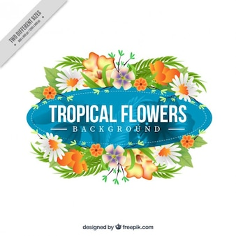 Fleurs exotiques décoration fond