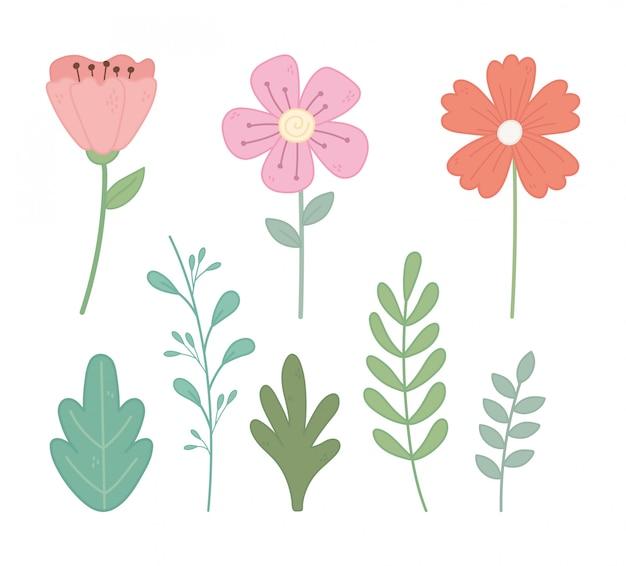 Fleurs feuilles branche feuillage nature éléments ensemble