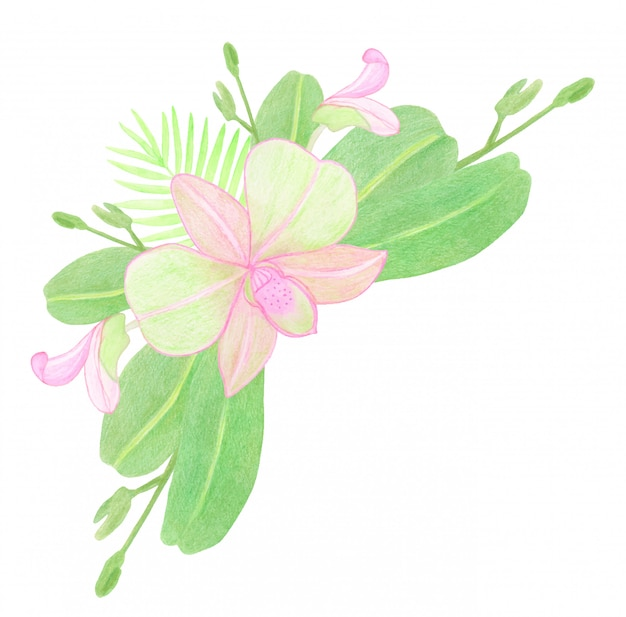 Fleurs et feuilles d'orchidée rose aquarelle