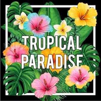 Fleurs et feuilles de paradis tropical